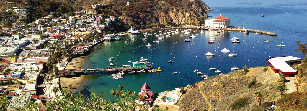A postcard view of Avalon Bay!