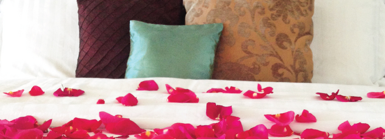 Rose petals adorn one of our Suites for a guest's special occasion.