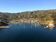 An aerial view of Avalon Bay in the morning light.