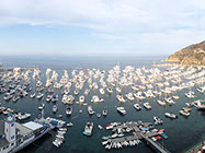 A gorgeous view of a full harbor during the Fourth of July Holiday.