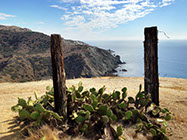 Overlooking Ben Weston Beach, on the backside of Catalina Island.